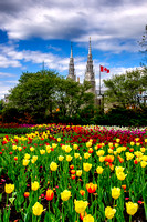 Tulip Festival and Notre-Dame Cathedral Basilica